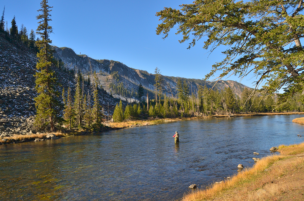 Man Fly Fishing on the Yellowstone Rivers