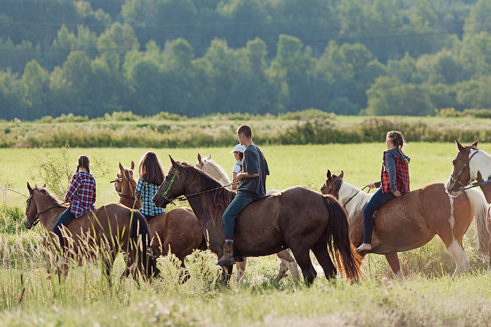 Horseback Riding Near Jackson Hole
