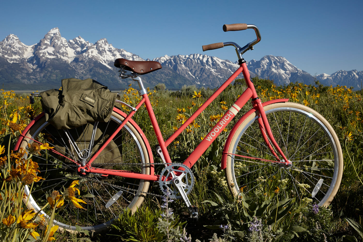 Bike in Tetons