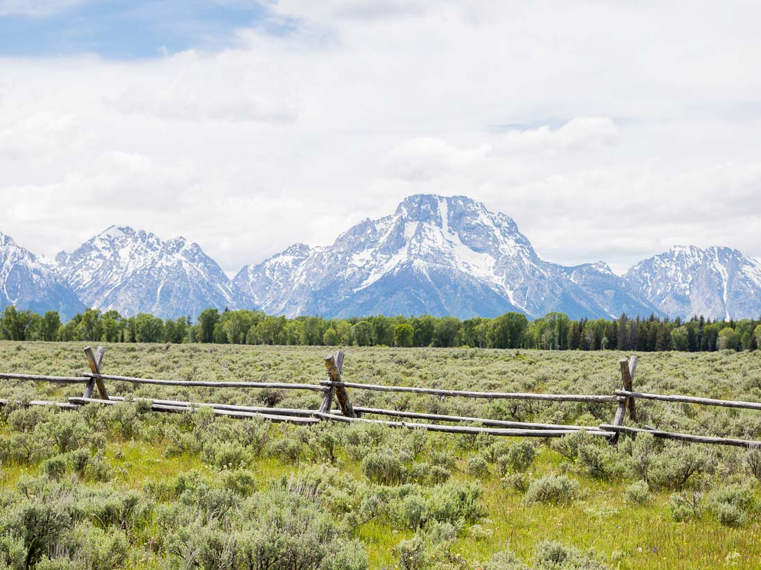 View Outside The Jackson Hole Lodge