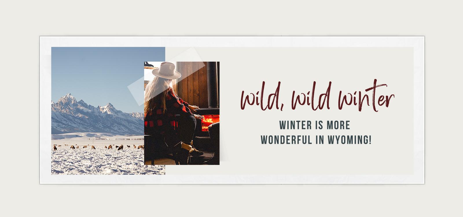 Wild, Wild Winter Banner