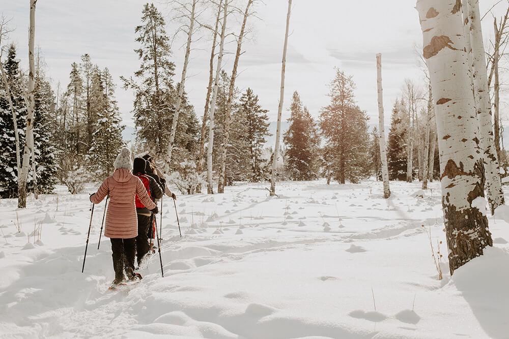 Snowshoeing in Jackson
